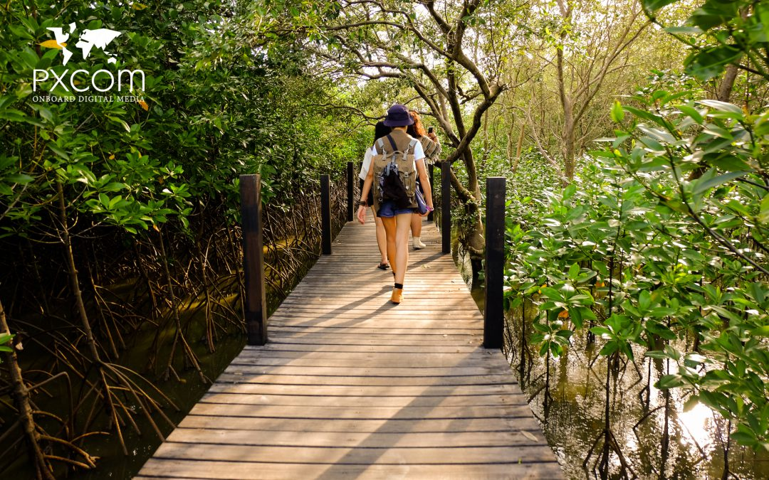 6 reasons why you should join Responsible Tourism