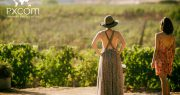 Wine tourism: when tourism celebrates wine