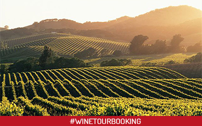 inflight ads wine tour booking